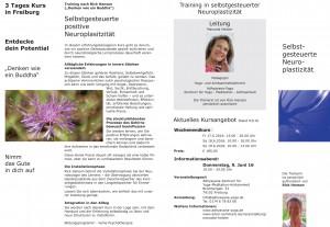 Neuroplastizität Juni 16